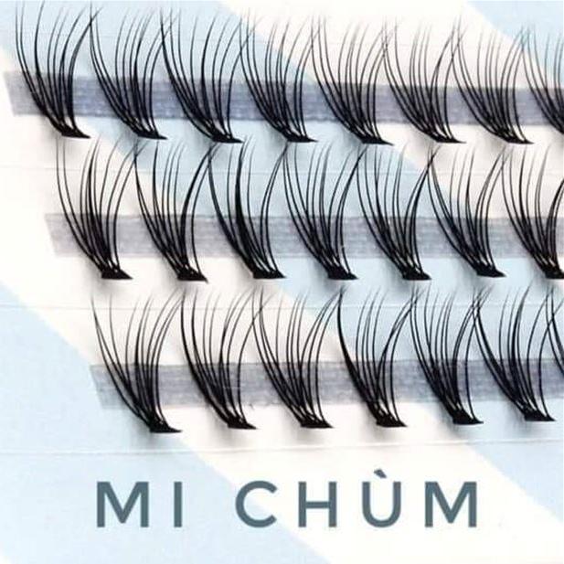 lông mi chùm bán sỉ eyelashes-vn